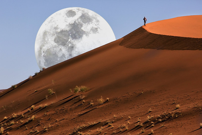 namib-desert-dune-walking-in-the-namib-desert-at-sossusvlei-in-namibia1